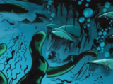Anguila Venenosa