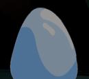 Protodermis