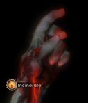 Incineracion 1