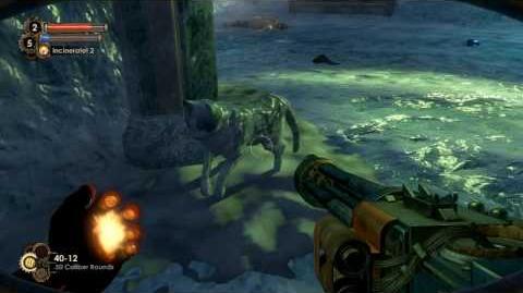 Bioshock 2 Easter Egg - Schrödinger's cat