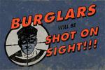 Burglarsshotonsight