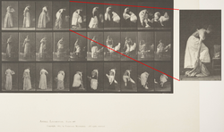 Eadweard Muybridge - Miscellaneous phases of the toilet