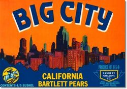 Antique-vintage-art-fruit-crate-label-023-big-city-bartlett-pears