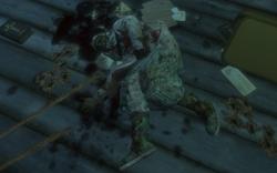 Sullivan's Corpse