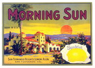 Morning-Sun-Brand