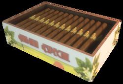 Habana Especial