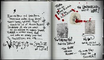 Lutwidge journal pg8-9