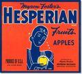 Hesperian.jpg