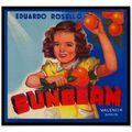 Vintage sunbeam orange fruit crate label poster-r27dd42b2ed324ce683f6ca9d825400e6 7khz 8byvr 512.jpg