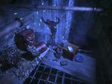 Timmy H. Interrogation