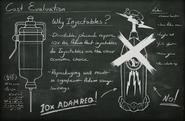 Chalkboard Injectables VS Drinkables
