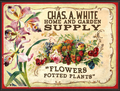 Chas A White Supply Sign.png