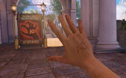 BioShock Infinite - Town Center - Raffle Square - False Shepherd Sign f0817