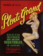 Plenti-grand vegetables in season