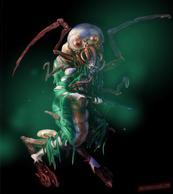 Grub Mutant