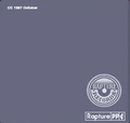 Record Album Cover 4 BSI BaS.png