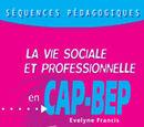 Séquences Pédagogiques VSP en CAP et BEP