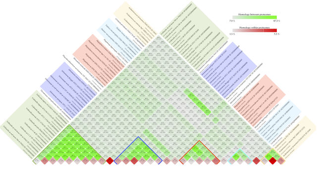 File:Fig6 Matrix.jpg