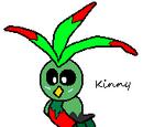 Kinny