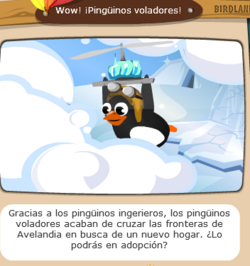 Flys penguins