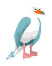 Gaviota Azul BirdLand