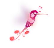 Colibri magico rosa