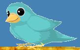 Canario Azul