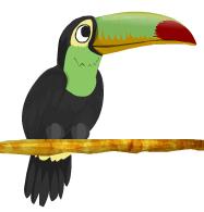 Tucan BirdLand