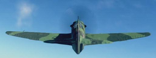 Yak9T back