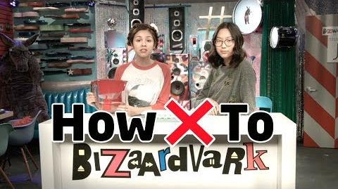 How Not To Do Something Bizaardvark Disney Channel