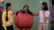 PK Tomato