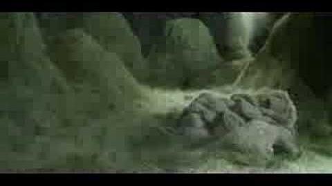 Björk - where is the line