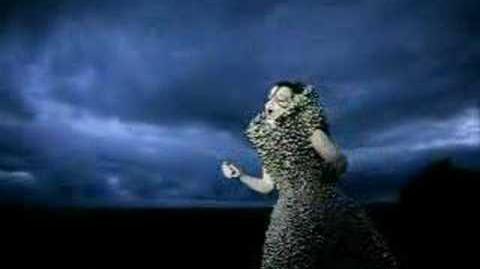 Björk - who is it