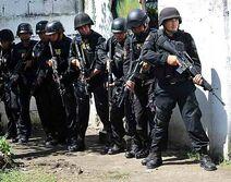 SWAT police team