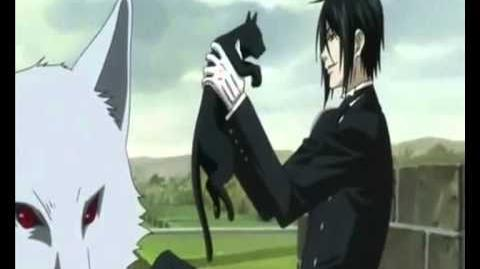 Sebastian und die Katzen