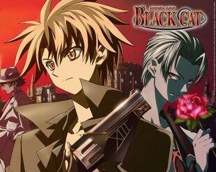 Black-Cat-black-cat-6400910-500-400