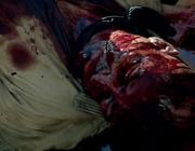 Singleton death