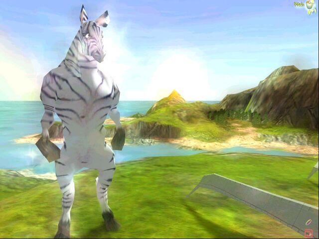 File:Zebra.jpeg
