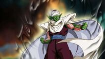 4-Piccolo-Quotes-From-DBZ-That-Are-Full-Of-Wisdom
