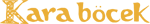 Kara Böcek - Logo