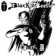 Black Beetle 12-4-2006