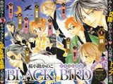 Black Bird Wiki