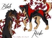 Blade and Reicher by FieryMaze