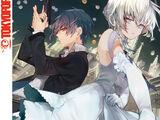 Band 7 (Light Novel)