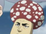 Talking Mr. Mushroom