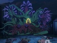 Zofnir Garden