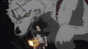 Charmy and her wolf