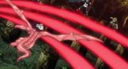 Salamander's Claw