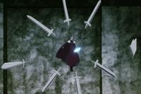 Silver Blades
