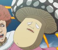 En Heavy Mushroom